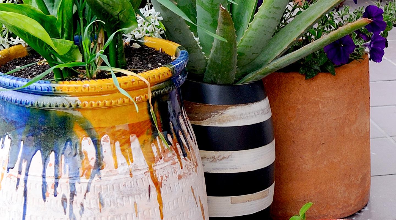 Paisajismo y dise o de jardines en barcelona y tarragona - Cortavientos de jardin ...