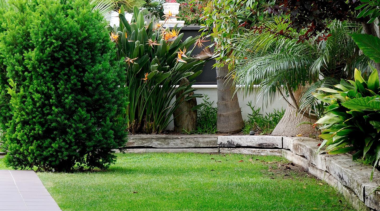 Paisajismo y dise o de jardines en barcelona y tarragona for Disenos de albercas para espacios pequenos